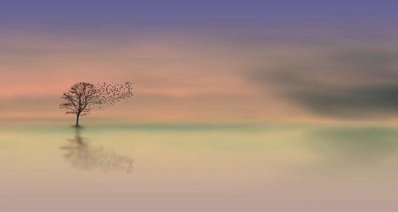 Meditative Landscape